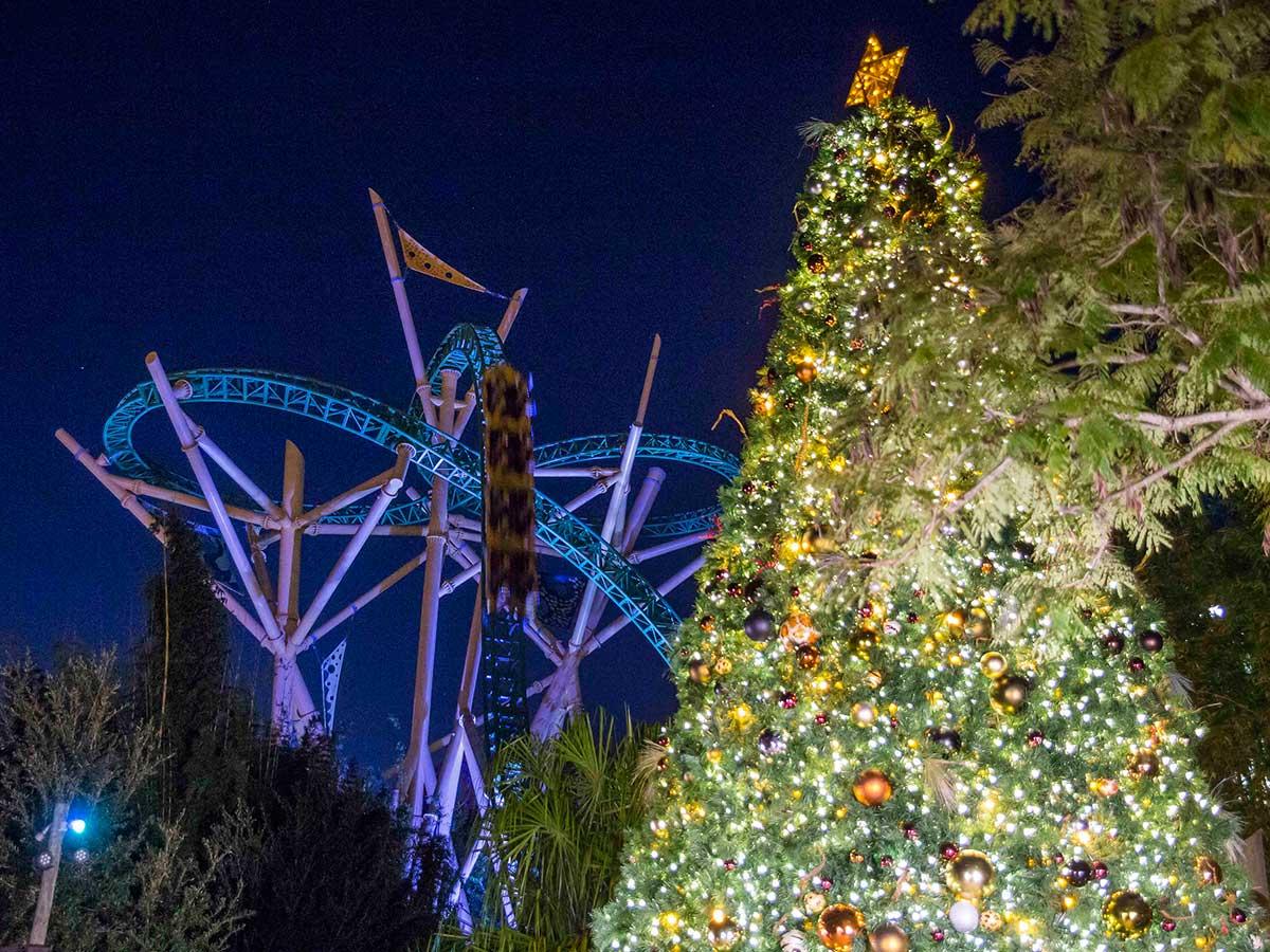 Busch Gardens Tampa Bay con Christmas